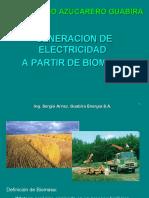 20111029-ACTABOL-PresentacionGeneracionConBiomasa