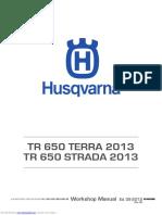 tr_650_terra_2013.pdf