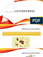 SISTEMA_ENDOCRINO_1