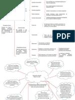 Actividad 1. Concepto de texto y Dimensiones y niveles (1)