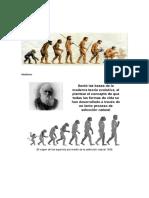 biologia evolutiva.docx