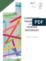 Ciencias Currículum Transitorio Profesores