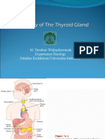 Intro To The Function Of Thyroid Gland Ppt Thyroid Physiology