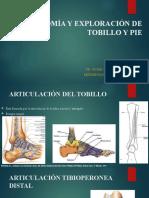 ANATOMÍA Y EXPLORACIÓN ARTICULAR DE TOBILLO Y PIE