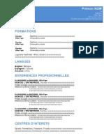Format3.3.docx