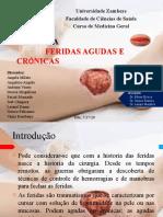 Feridas agudas e cronicas.pptx