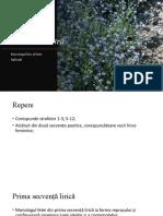Floare albastra_aplicatii.pptx