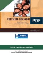 CNB Ciclo Educación Básica por madurez.pdf