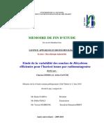 42056536.pdf