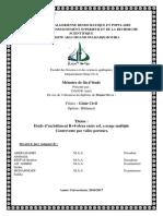 mémoire 2017.pdf