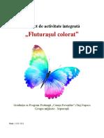 proiect_fluturasul_colorat