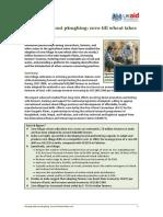 DFID_impact_case_study_Zero-tillage_FINAL_1_