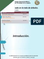 Presentación-Ecocidio- Tala de árboles..pptx
