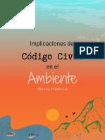 Código Civil en el Ambiente (Bienes Públicos)