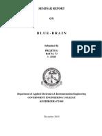 blue brain seminar report