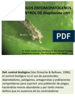 2.3.1 - UsoHongosEntomopatogenosParaControlDiaphorina (1)