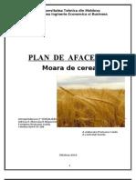 Plan de Afaceri - Moara Pentru Cereale