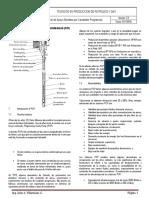 Material de Apoyo Bombeo por Cavidades Progresivas V2