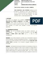 DEMANDA   DE  REDUCCION DE  PENSION ALIMENTICIA.