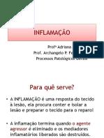 Inflamação completo.pdf