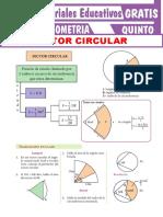 Sector-Circular-Para-Quinto-Grado-de-Secundaria