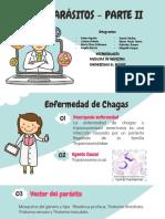 Presentacion Hemoparasitos II.pdf
