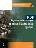 DIAGNOSTICO AMBIENTAL, SAN JUAN DEL RIO.pdf