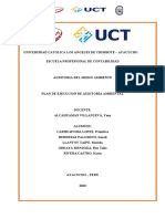 El plan de ejecucion de auditoria ambiental.docx