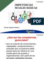 Presentación Competencias Gerenciales (2).pdf