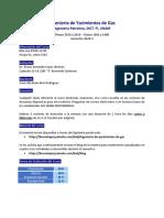 Lineamientos_IYG_2020_2.pdf