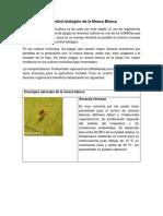 24. El Control biologico de la mosca blanca