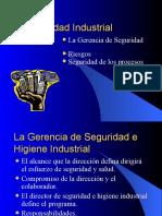 Gerencia Seguridad Industrial
