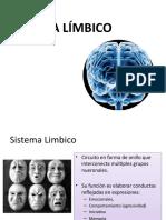 Sistema_limbico_1.pptx