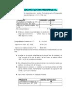 POLÍTICAS DE PROYECCIÓN PRESUPUESTAL