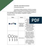 Materiales para laboratorio de quimica