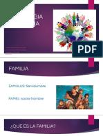 evolucion familiar y tipologias