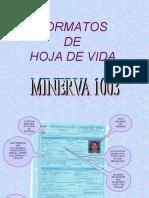 8792432-Tipos-de-Hojas-de-Vida
