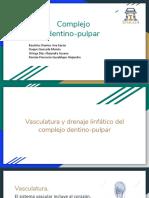 Complejo dentino-pulpar.pdf
