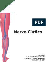 Nervo Ciático - Professor Luiz Bocato - LF - PILATES