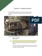 Agence France-Presse. (2020). Origine du coronavirus - « il manque une pièce du puzzle »