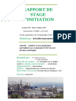 Rapport stage d'initiation (informatique OCP Safi)