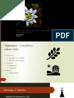 Alteraciones Morfo-Anatómicas y Fisiológicas del Maracuyá Fertilizado con