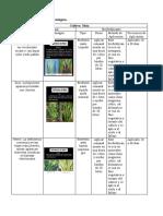 Plan de fertilización ecológica.docx