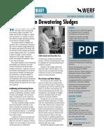 Innovations in Dewatering Sludges