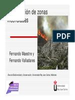 Restauración de zonas incendiadas