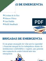 BRIGADAS DE EMERGENCIA CRIS