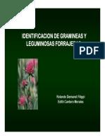 15-Laboratorio-Identificacion-de-Especies.pdf