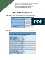 AVANCE SEGUNDO  ENTREGA (1).docx
