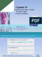 Raff_Fisiologia_FIGURAS_c20_ACTIVIDAD_CEREBRO