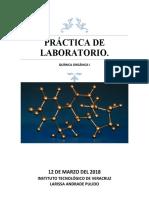 PRÁCTICA DE LABORATORIO ORGANICA.docx
